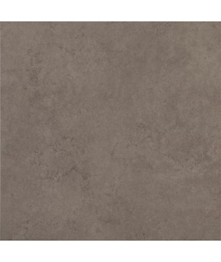 Buxy Grey Matt 60x60