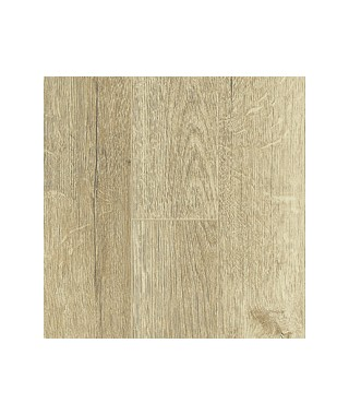 60117 chêne séquoia