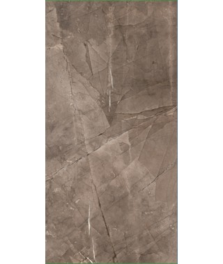 PULPIS Brown Brillant Mural 30x60