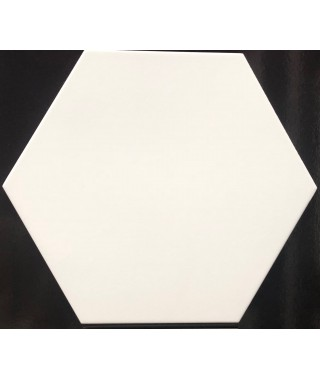 OPAL Blanco 33x28.5 K50